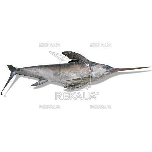 Меч-рыба (меченос) с/м