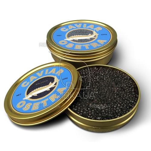 Черная икра осетровая Grand Caviar (500 грамм)