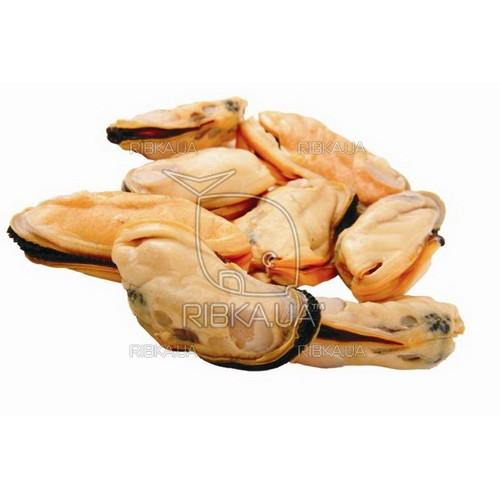 Мясо мидии в/м 80-100, Чили (500 грамм)