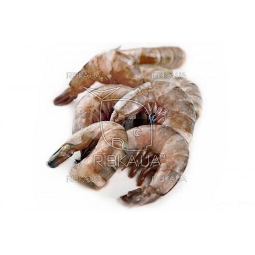"""Креветка тигровая без головы с/м """"Черный Тигр"""" 21-25 (0,5 кг)"""