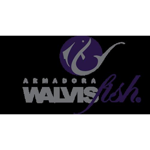 WalvisFish S.L.