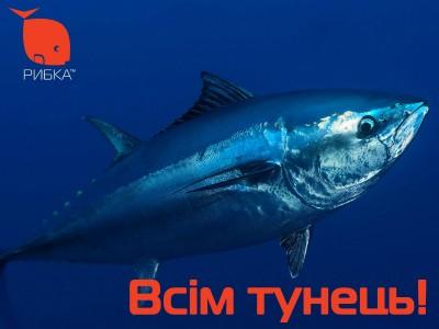 Всем тунец!
