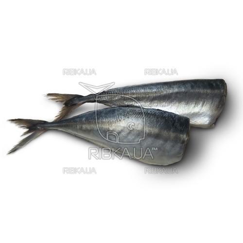 Ставрида перуанская б/г с/м (до 1 кг)