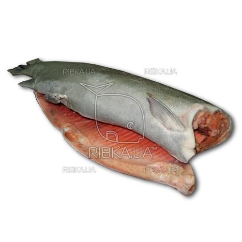 Форель с/м 4,5-5,4 (до 6 кг)