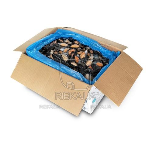 Мидии в полуракушке в/м 50-80 Blue Shell (Чили) (10 кг)
