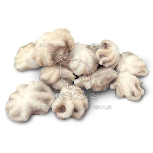 Осьминоги свежемороженые 40-60 (1 кг)