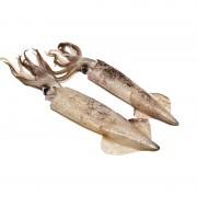 Кальмар патагонский с/г с/м  (1 кг)