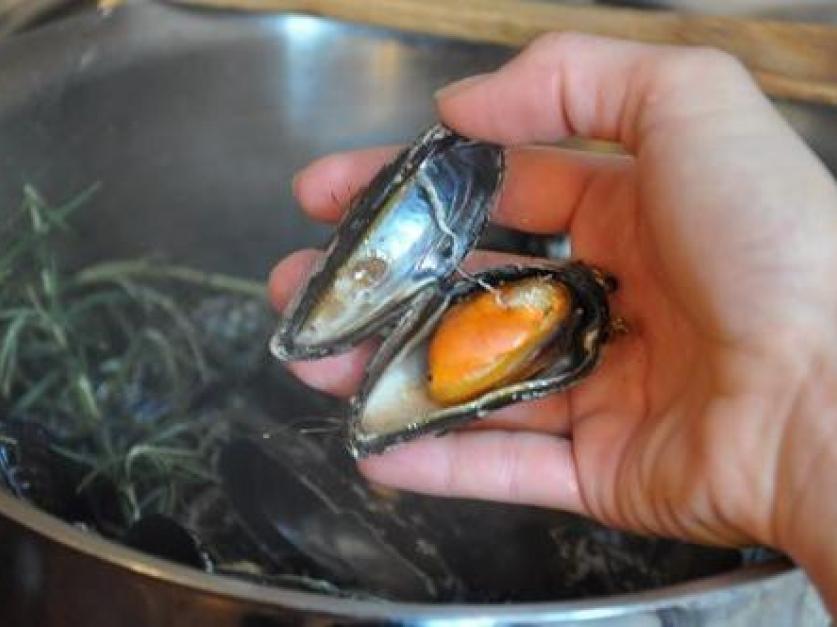Як чистити морепродукти в мушлі?