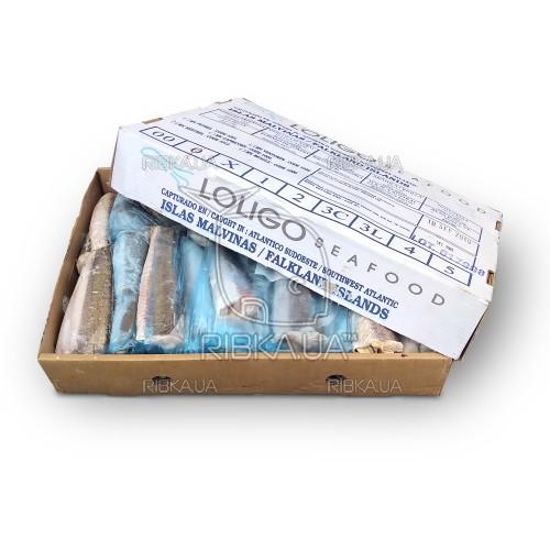 Хек тушка (Мерлуза) размер 200-300 Loligo Seafood (Фолклендские о-ва)