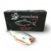 Кижуч б/г с/м 2,7-4,1 Camanchaca (Чили) (25 кг)