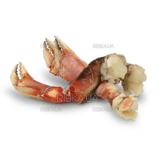 Краб клешни Дандженесс (Dungeness crab) в/м