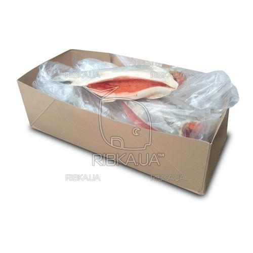 Форель с/м 1,8-2,7 (до 2,7 кг)